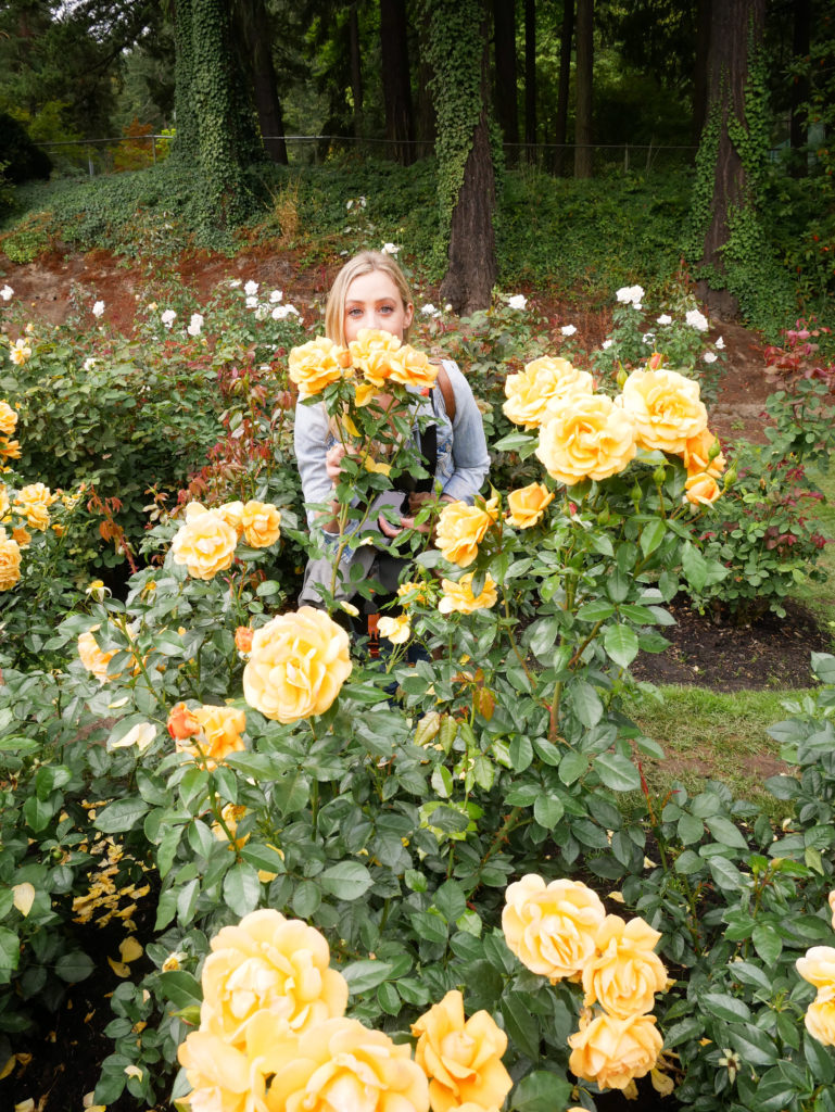 Woman with yellow roses Portland rose garden