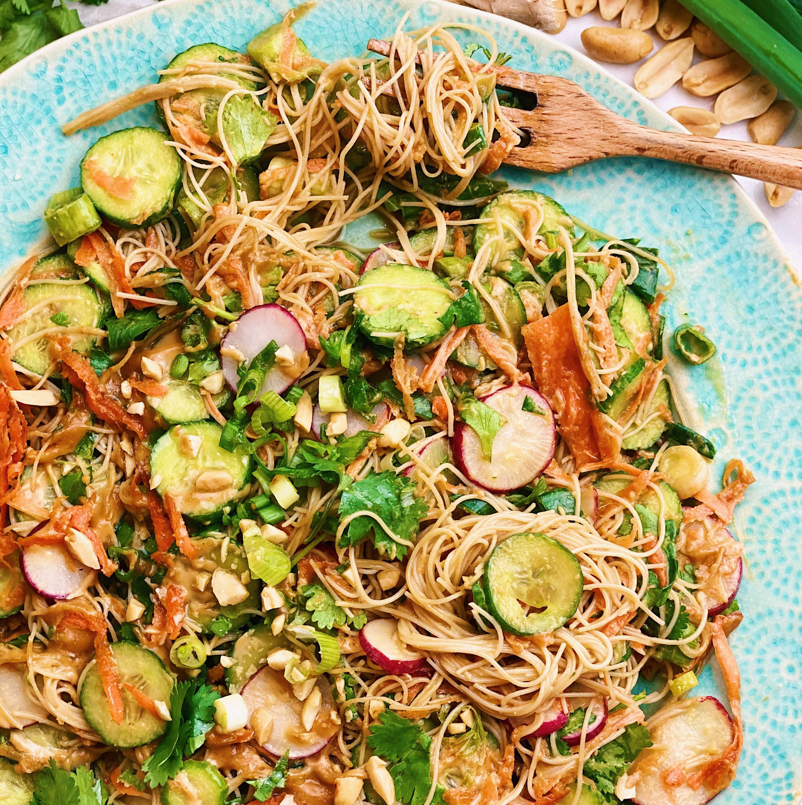 Southeast Asian Inspired Peanut Noodle Salad